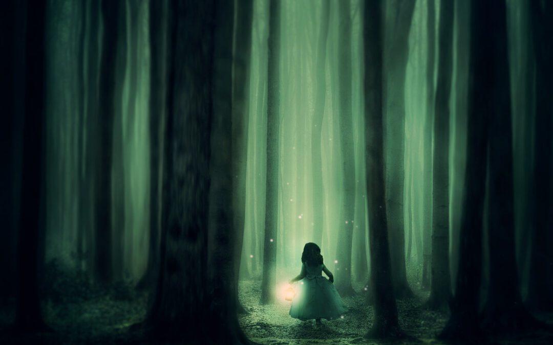 Jak se Terezka ztratila v lese